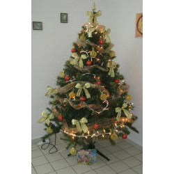 Vianočný čas v domove sociálnych služieb